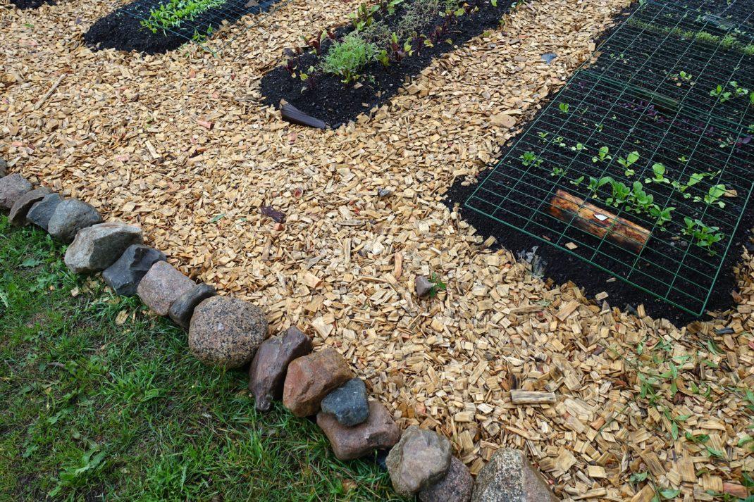 En prydlig kant av stenar med träflis på ena sidan och gräsmatta på andra.