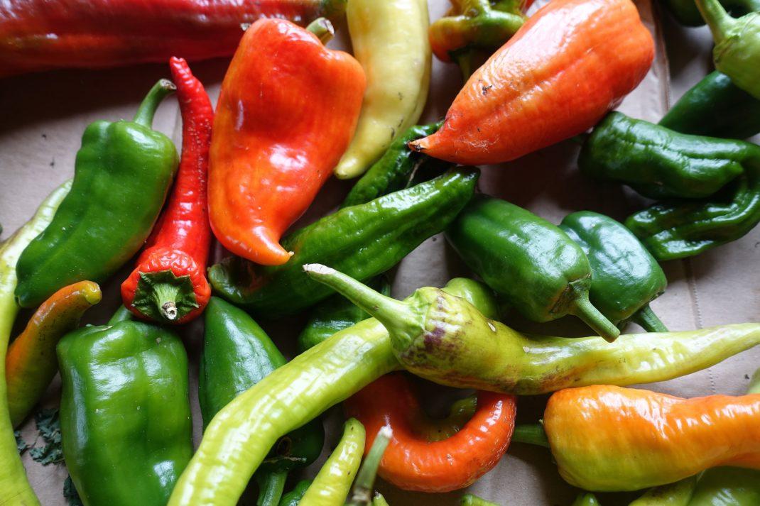 Närbild på gröna och röda paprikor på en kartongbit. Close-up of red and green bell peppers.