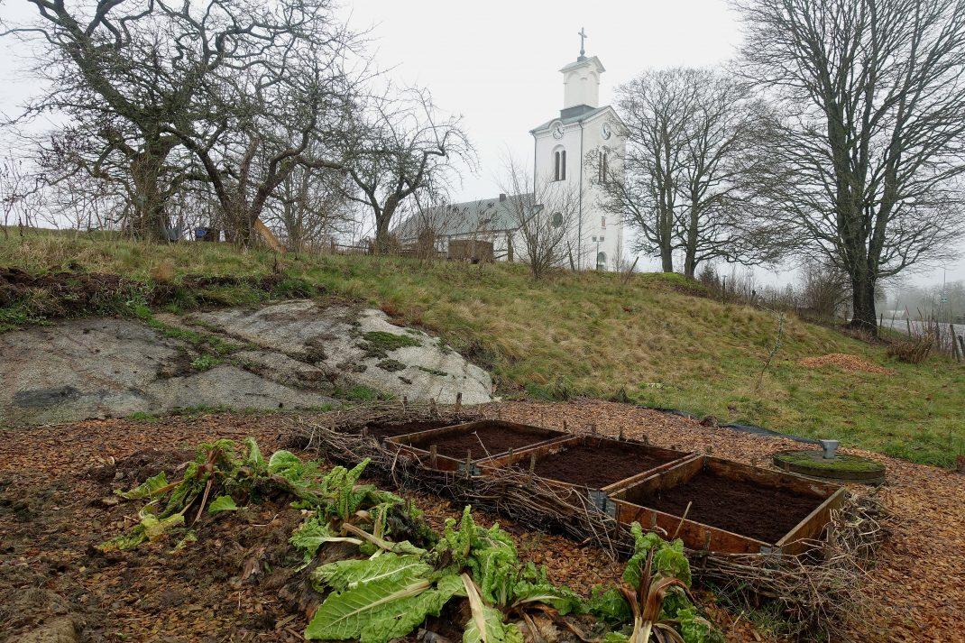 En liten köksträdgård med kyrka i bakgrunden.