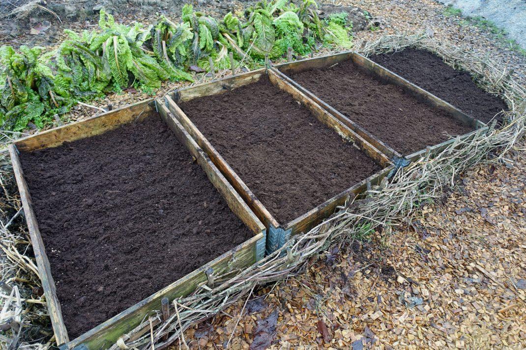 Pallkragar på rad i en trädgård.