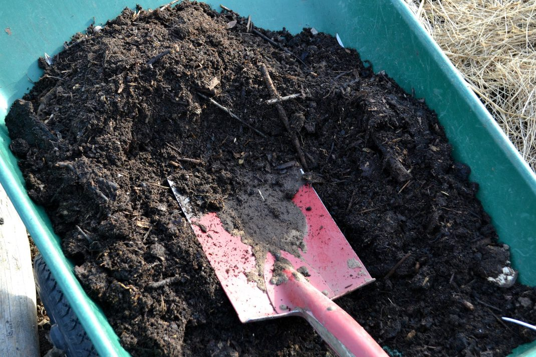 Kompostjord i en skottkärra. Compost in a wheelbarrow