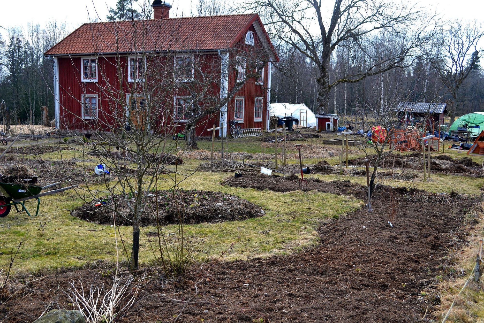 How To Make A No Dig Garden Bed Sara S Kitchen Garden