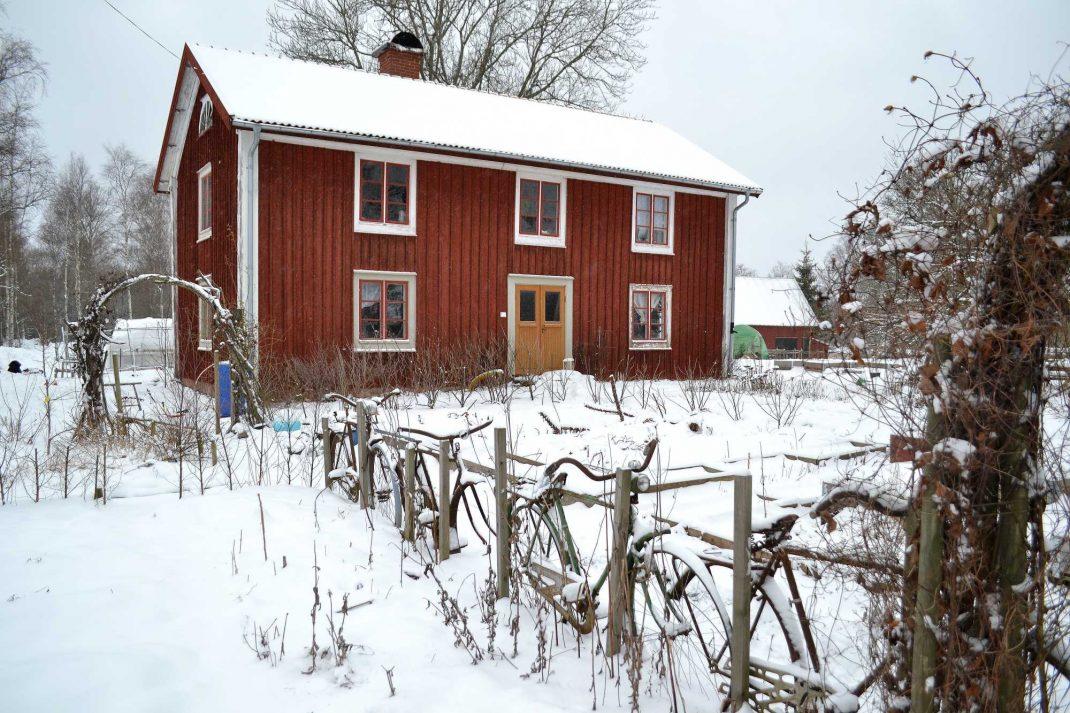 Köksträdgård och hus täckt av snö. March gardening, kitchen garden.