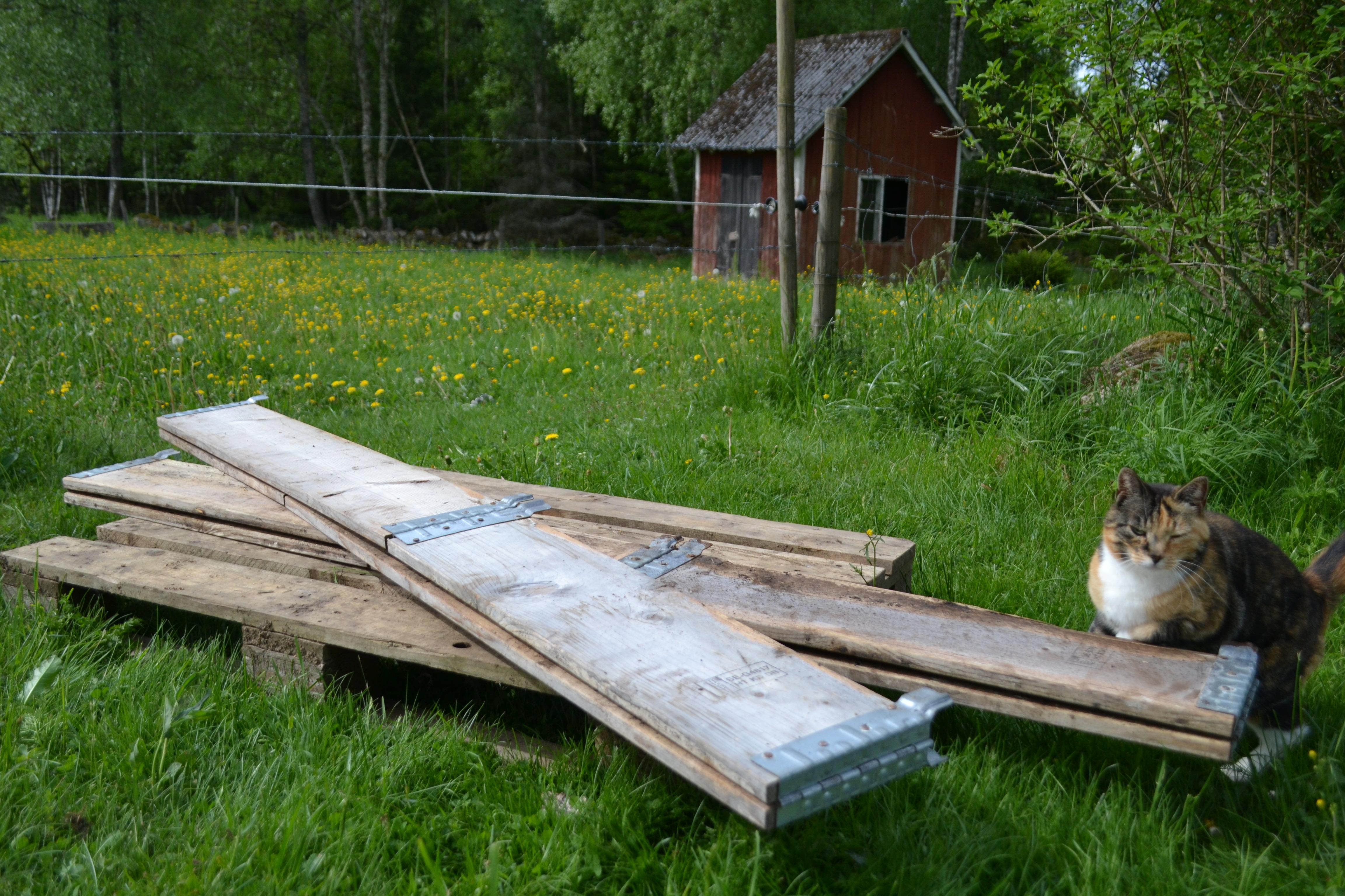 En lastpall med två ihopvikta pallkragar och en katt ovanpå. Pallet collars, two folded pallet collars with cat.