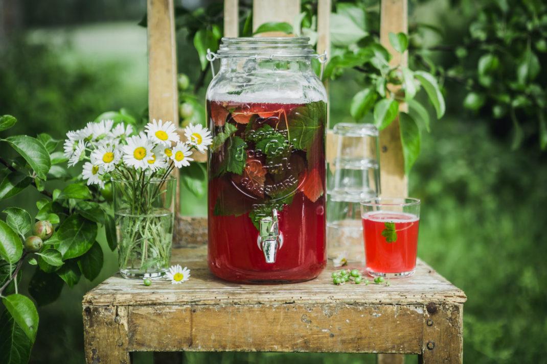 På en sliten trästol står en kanna rosaröd lemonad mitt i en grönskande trädgård.
