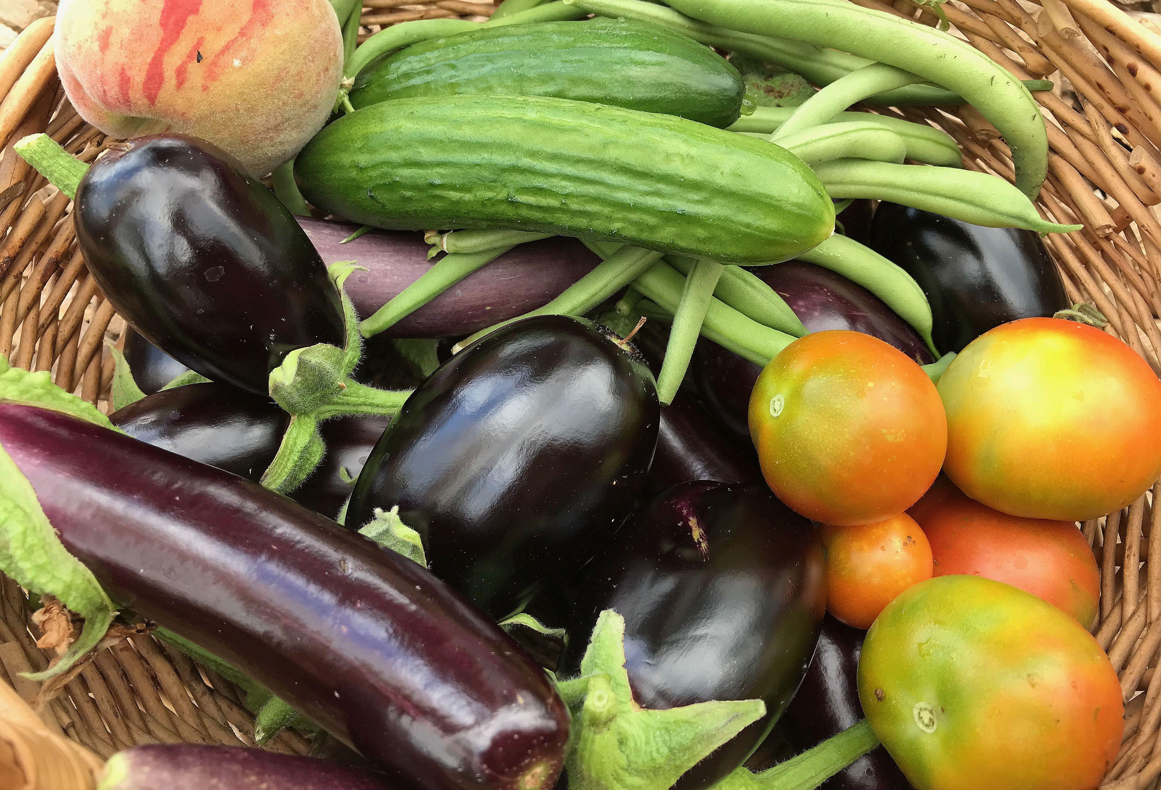 En läcker färgglad bild med glänsande vackra nyskördade grönsaker i en korg.