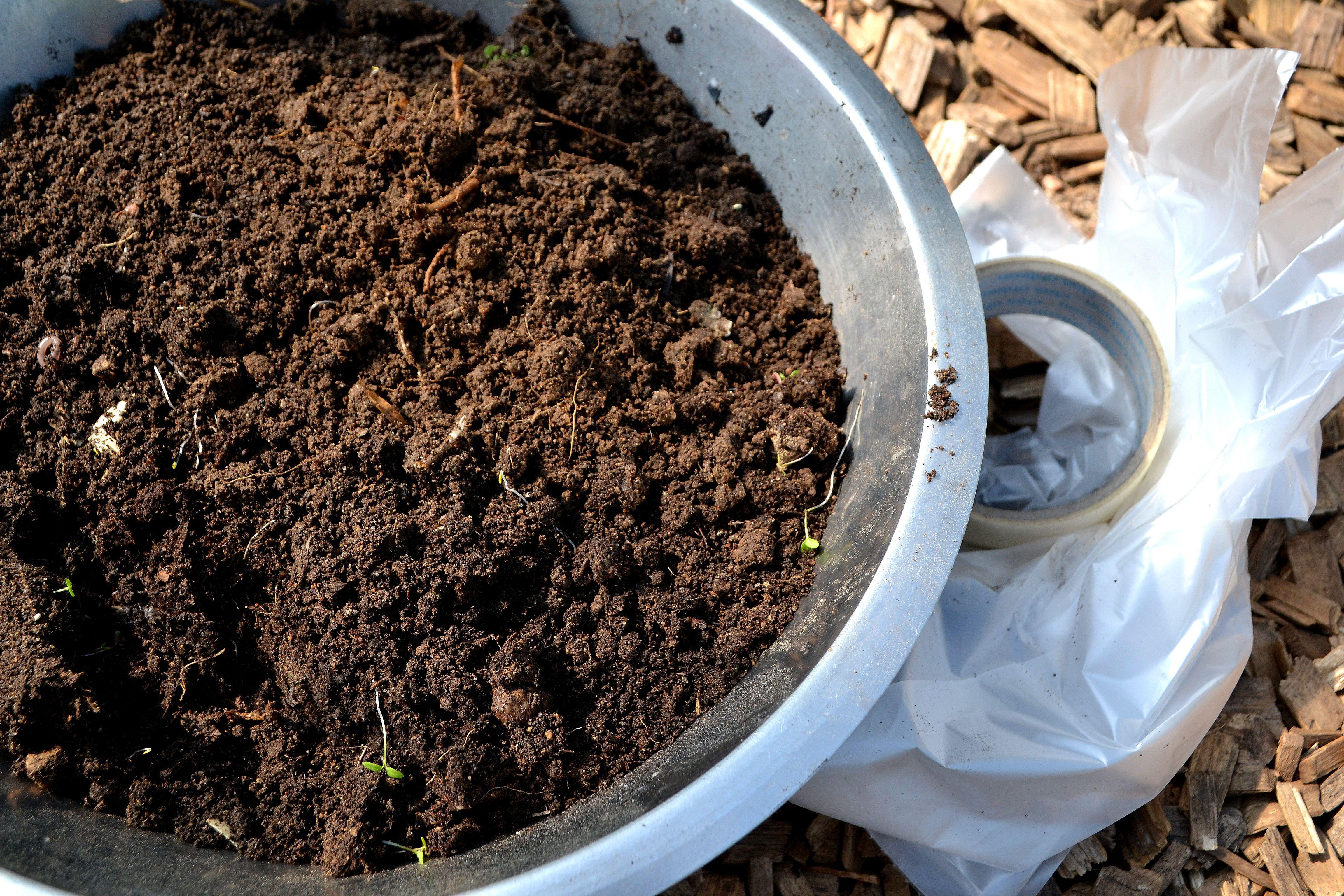 En rostfri skål fylld med jord. Soil analysis, a bowl filled with soil.