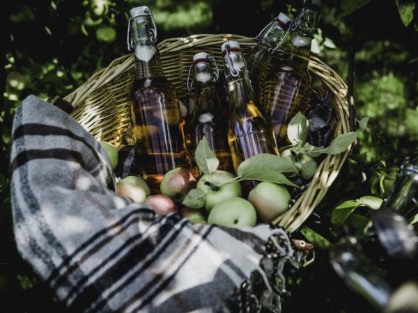 En korg med klirrande klara flaskor med guldguld äppelsaft i. Mot en lökig bakgrund.