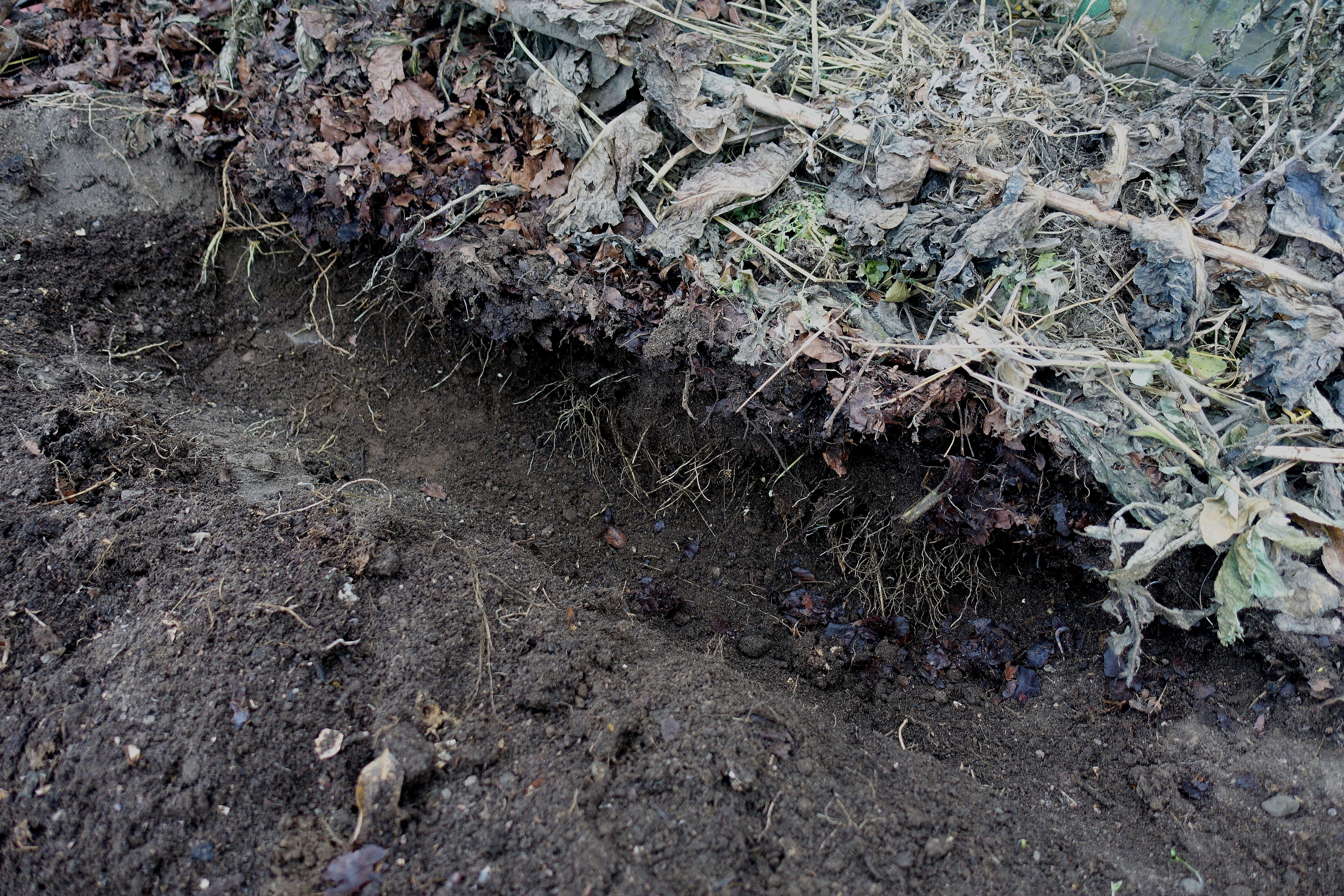 Ett dike är grävt mitt i jorden.