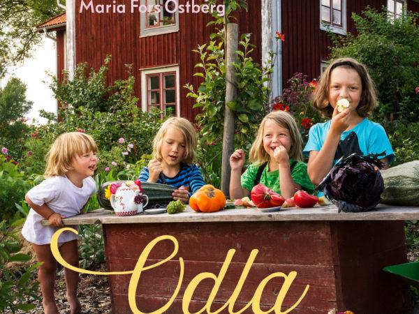 Bokomslag med fyra glada barn i trädgården som leker affär.