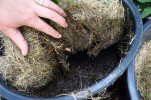 En hand lyfter på gräsklippet och visar den svarta jorden under.