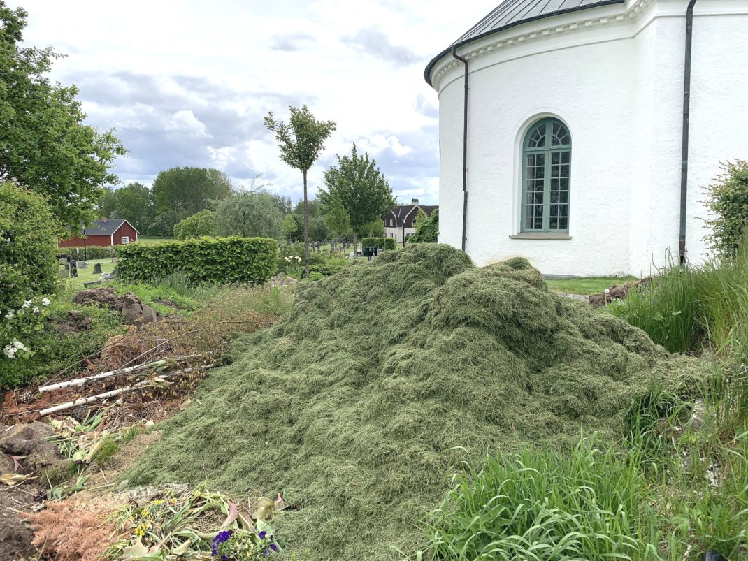 A pile of lots of green grass clippings and a white building behind.