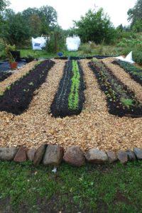 En liten köksträdgård med flis i gångarna och bäddar i raka led.
