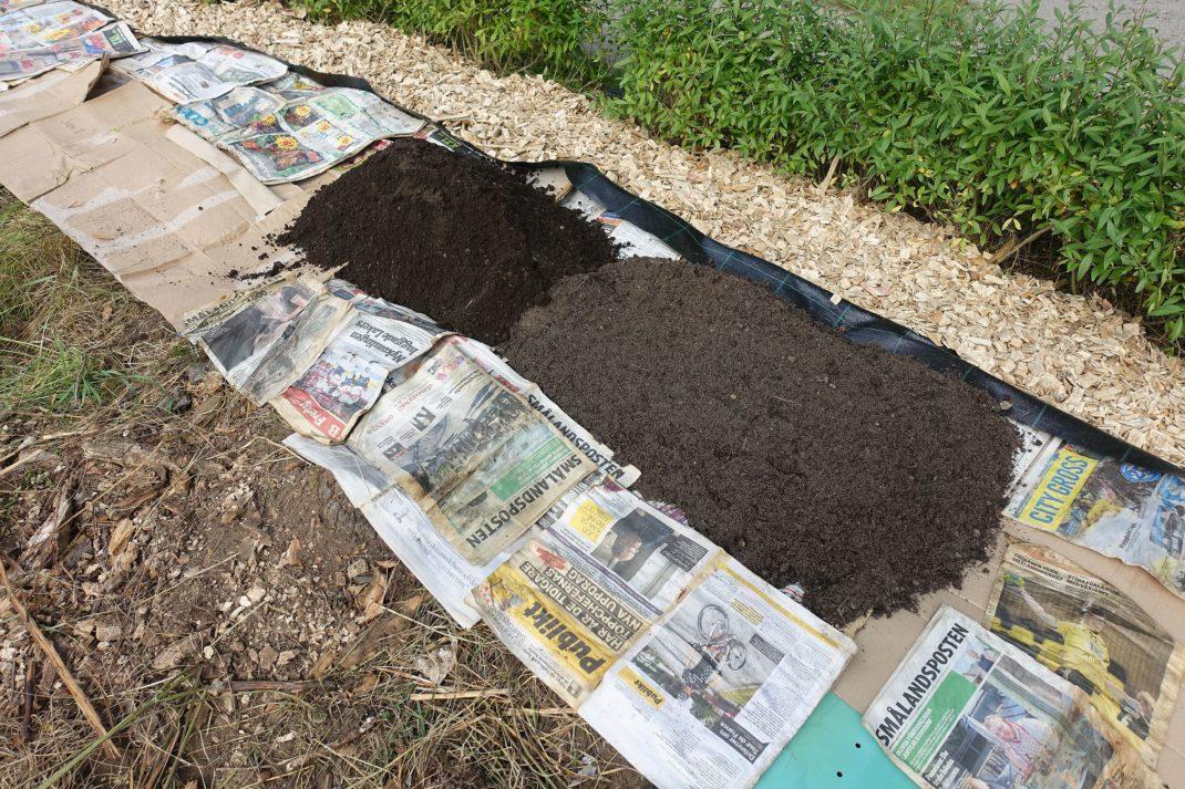 Ett pågående bygge av odlignsbäddar på tidningar.
