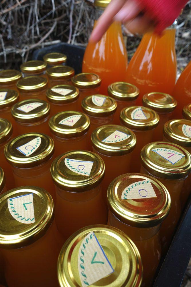 Små flaskor står tätt bredvid varandra, med en liten etikett med bokstav på locket.
