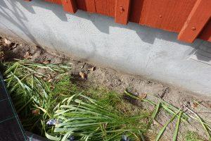Närbild på växter som vikts ner innan markduken läggs på plats.
