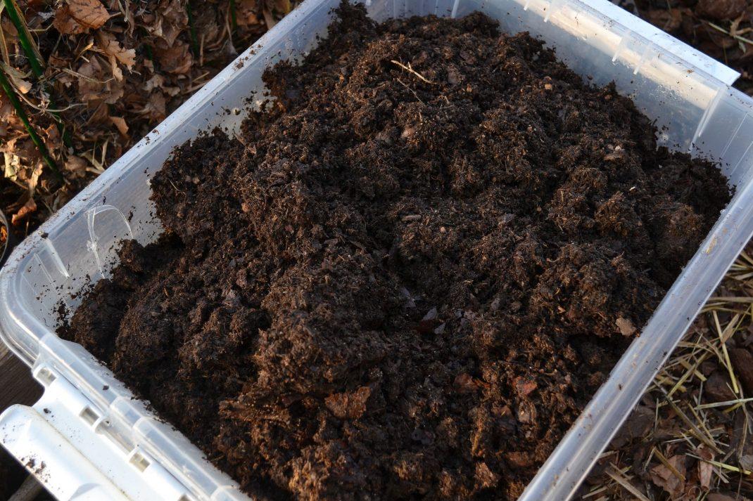 Närbild på back med komposterad gödsel, svart som jord.