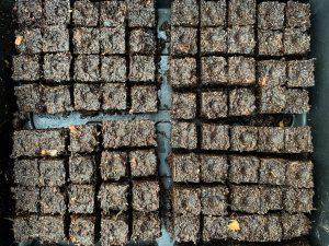 Små jordblock fotograferade ovanifrån.