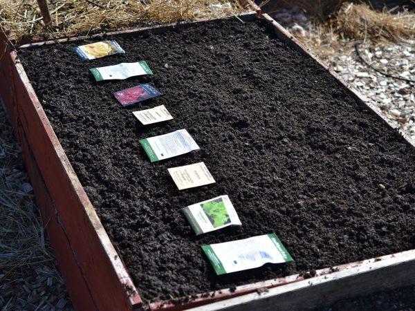 En pallkrage med jord med fröpåsar på.
