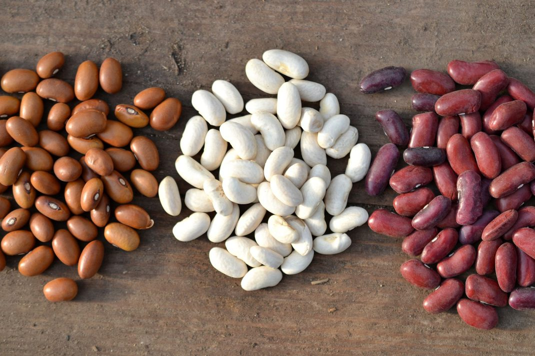 A bean harvest with three piles of beans.