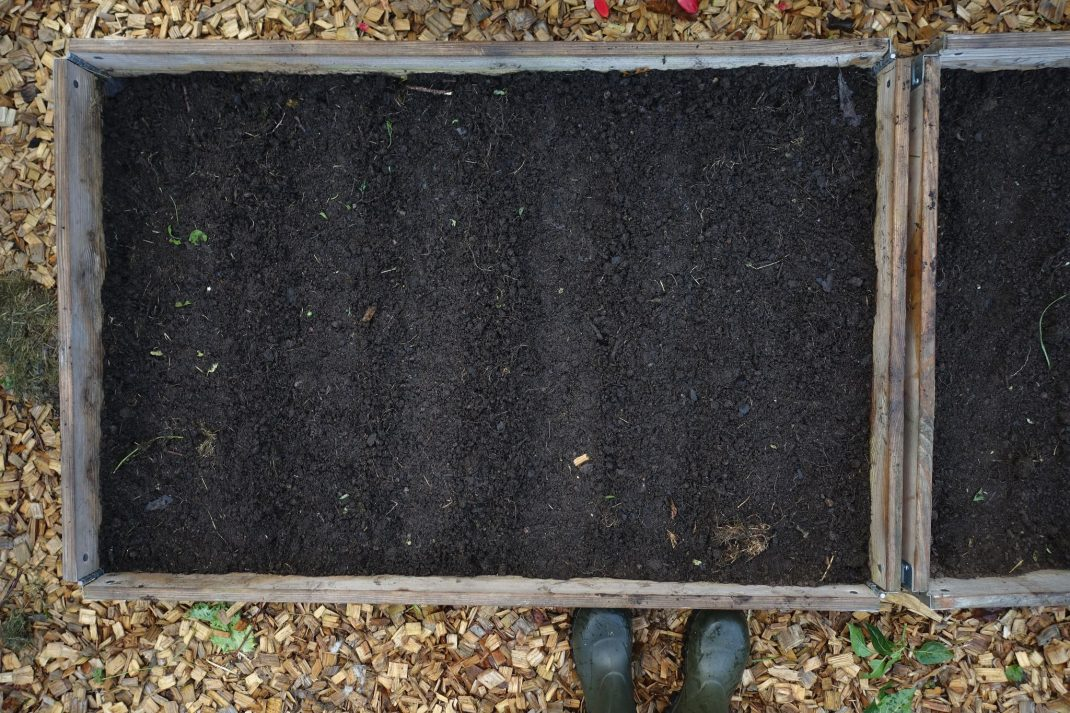 Raised beds in fall, picture from above.