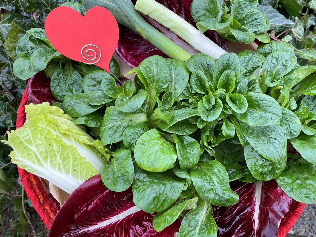 Gröna och röda bladgrönsaker och ett pappershjärta mitt i.