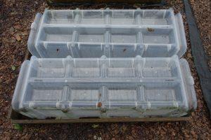 Genomskinliga små tunnlar av plast på en pallkrage.