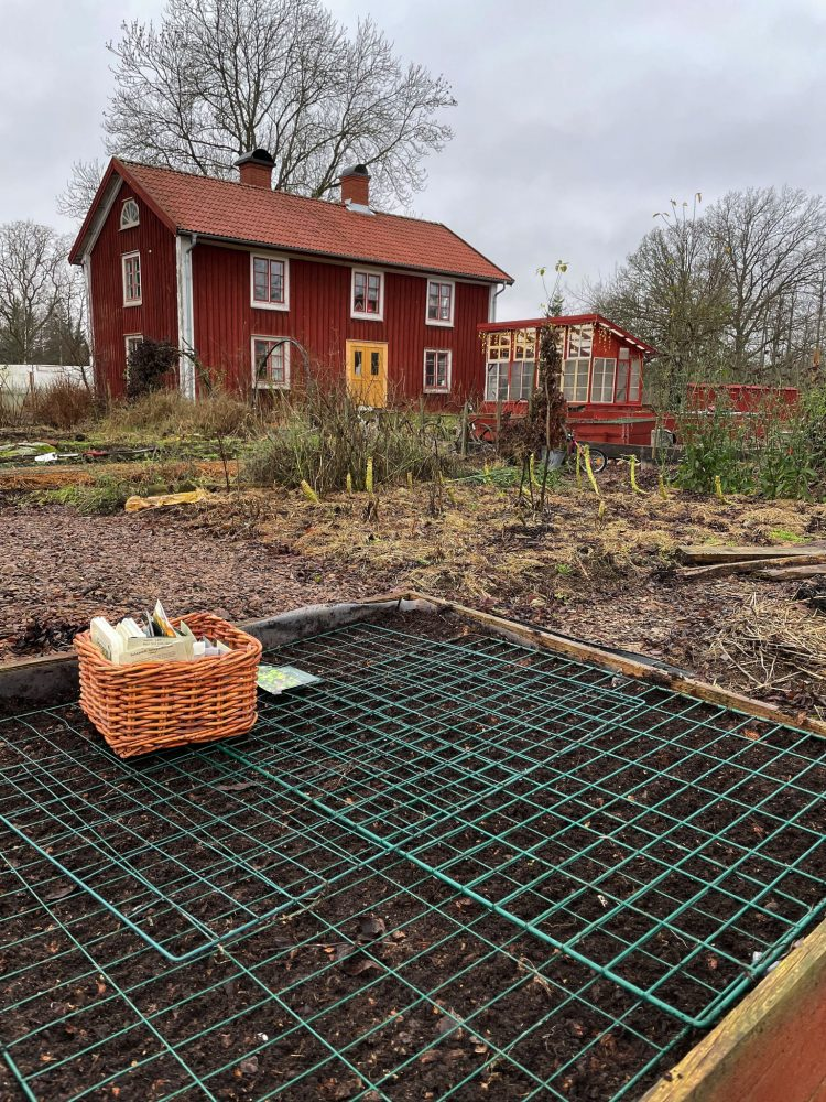 A red growing box with wire mesh on top and a house in the background.
