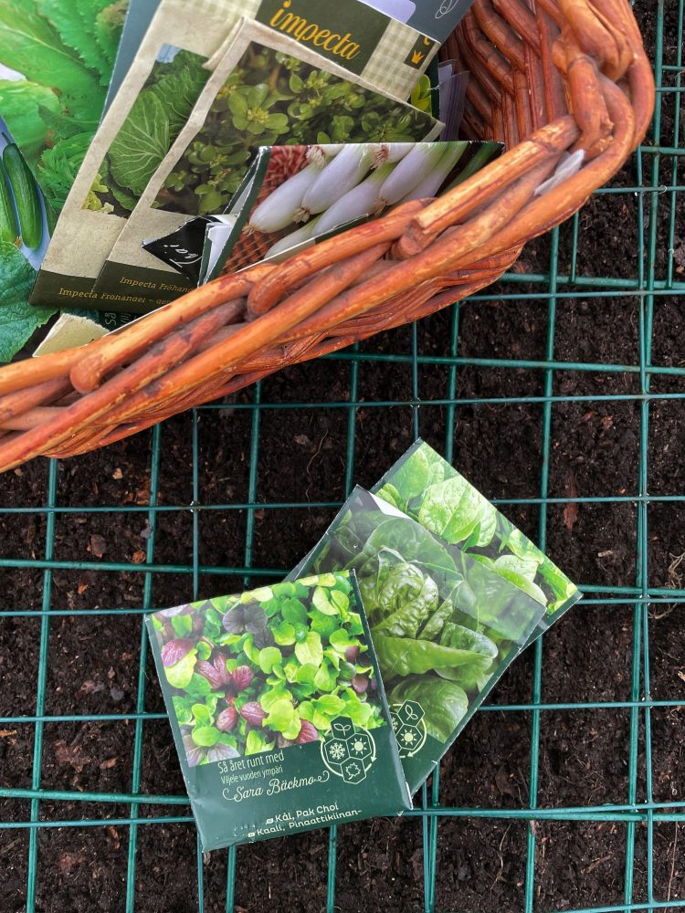 Close-up of a basket with seed packets for winter vegetables.